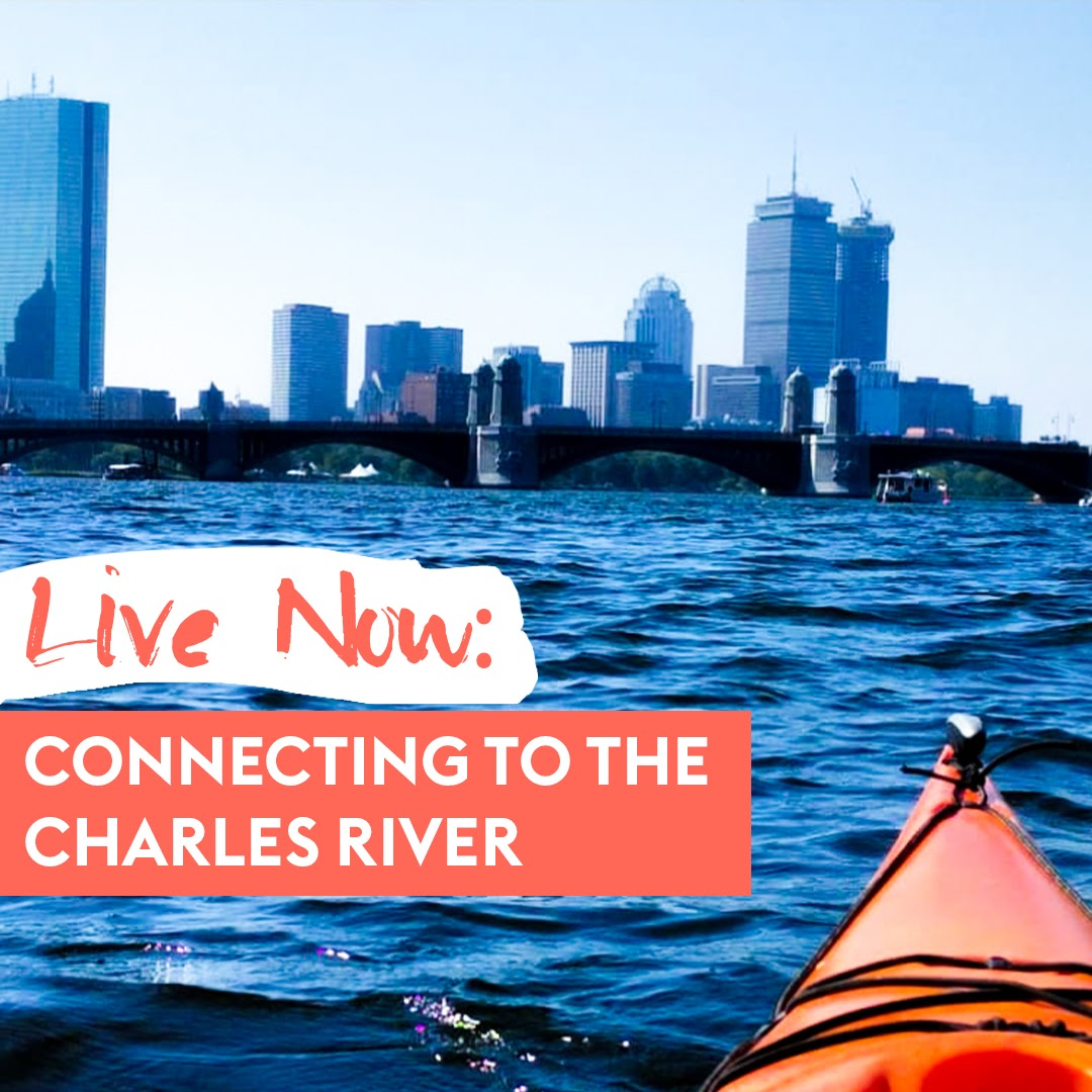 Connecting to the Charles River: Where to Walk, Bike, and Kayak in Boston/Cambridge
